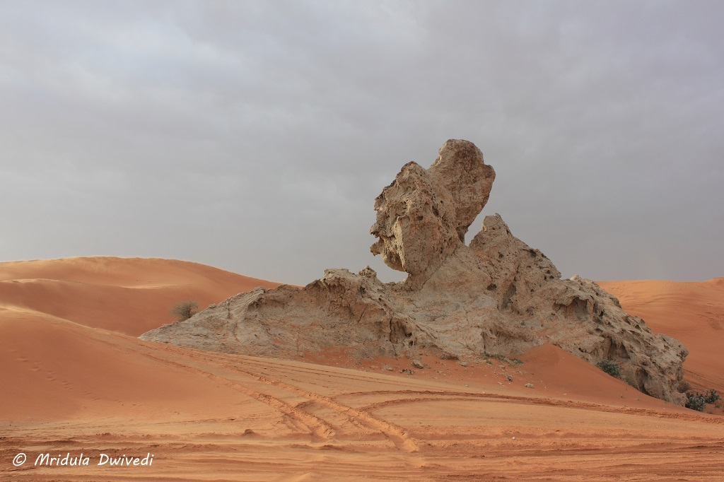 camel-rock-sharjah