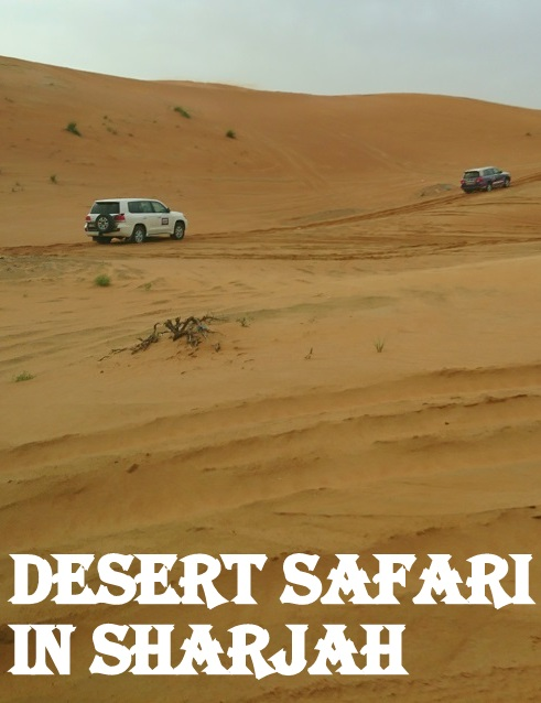 desert-safari-sharjah