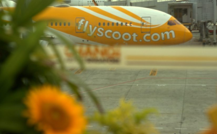 fly-scoot