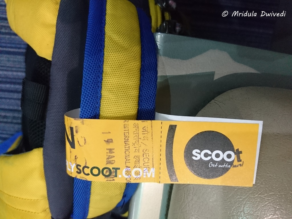 scoot-jaipur-singapore