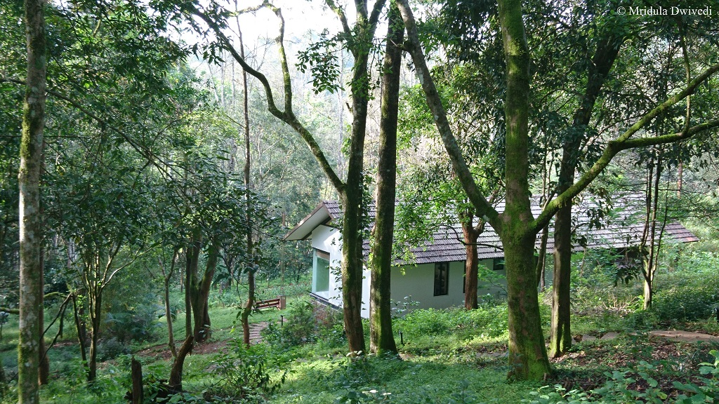 The Ibnii Coorg An Eco Friendly Resort In Coorg Karnatak