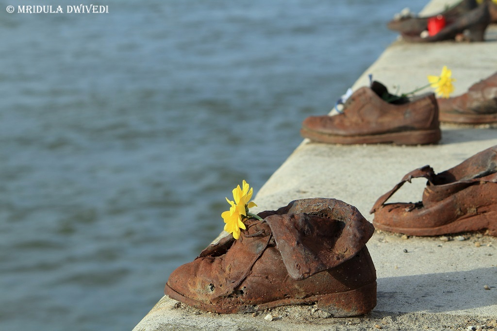 Shoes By Danube