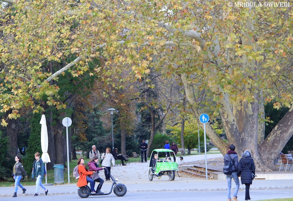 electric-scooter-margaret-island-budapest